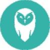 Owls Brest live stream