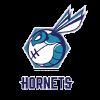Hornets live stream